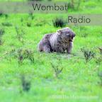 Wombat Radio Podcast of Artists Forum